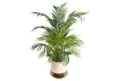 "53"" Areca Palm in Planter, Faux"