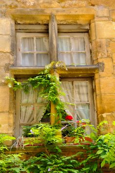 Window in Sarlat, France