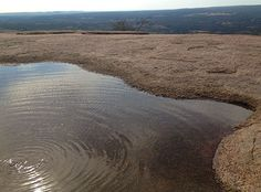 Vernal Pools at the Top of Enchanted Rock! There's another living universe in that water! Be Respectful! Don't wade or let your dog play, in these pools! Peaceful Places, Beautiful Places, Fun Facts About Texas, Vernal Pool, Places To Travel, Places To Go, Enchanted Rock, Texas Vacations, Fredericksburg Texas
