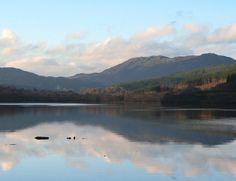 Loch Achonachie, Strathconon Permits from Loch Achonachie Angling Club via Contin Filling Station. North Coast 500, East Coast, Filling Station, Brown Trout, Homeland, Fly Fishing, Scotland, Club, Mountains