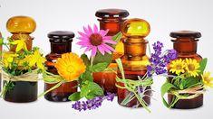 Základní recept na domácí tinkturu z léčivých bylin. Přednosti tinktury, dávkování a užívání. Whole Blends, Vitamin E Oil, Natural Cosmetics, Calendula, Alternative Medicine, Raw Materials, Glass Bottles, Natural Skin Care, Pesto