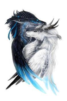Gefiederte Drachen von Isvoc Feathered Dragon of Isvoc Mystical Animals, Mythical Creatures Art, Magical Creatures, Dark Fantasy Art, Fantasy Artwork, Feathered Dragon, Fantasy Beasts, Beautiful Dragon, Dragon Artwork
