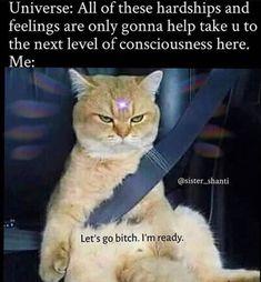 Funny Spiritual Memes