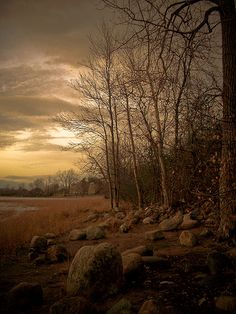 Late Autumn Shoreline - Ottawa, Canada - by Joel Bedford