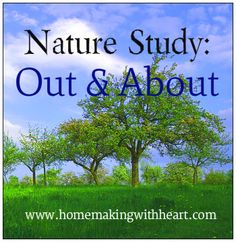 Ideas and topics for your nature walks, places to visit, what to take with you, and nature study ideas for the different seasons. homemakingwithheart.com