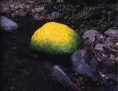 WriteDesign - Historical and Cultural Context - Andy Goldsworthy - Beneath the Surface Appearance