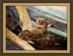 can be purchased at CullumsWildlifeArt.com