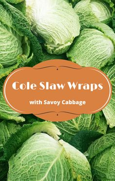 The chefs from Root & Bone visited Today Show to share a way you can enjoy more fresh greens at the table. Try this recipe for a Cole Slaw Wrap! Best Vegetarian Recipes, Diet Recipes, What's Trending Today, Savoy Cabbage, Eating Well, Clean Eating, Cole Slaw, The Chew, Coleslaw
