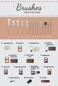 Make-up Pinsel & wie man sie benutzt! – Sie wissen nicht genau, welchen Make-up… Makeup brushes & how to use them! – You don't know exactly which makeup brush to use for which texture? Makeup Brush Uses, Best Makeup Brushes, Best Makeup Products, Beauty Products, Makeup Brush Hacks, Makeup Brush Storage, Eyeshadow Brushes, Makeup Brands, Contour Makeup
