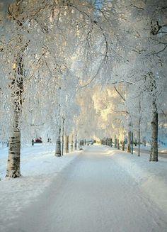 Dalarna, Sweden - WOW!