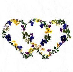 Instagram Pressed Flower Art, Flowers, Instagram, Flower Preservation, Royal Icing Flowers, Flower, Florals, Floral, Blossoms