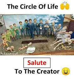 Circle of life True Interesting Facts, Interesting Facts About World, Intresting Facts, General Knowledge Facts, Knowledge Quotes, Reality Of Life, Reality Quotes, True Quotes, Funny Quotes