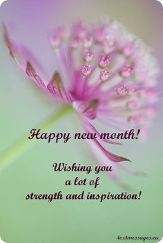Top 50 Happy New Month Messages, And New Month Wishes Happy New Month November, Happy New Month Images, Happy New Month Messages, Happy New Month Quotes, August Month, Happy New Month Prayers, September, New Month Greetings, New Month Wishes