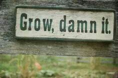 I find myself saying that a million times over during the growing season