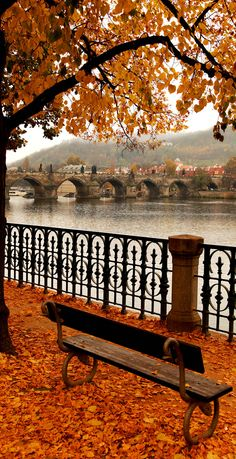 Charles Bridge in Autumn Melancholy, Prague. Czech Republic...