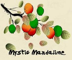 Mystic Mandalime. Sweet and Sour citrus juice. Just waiting for payday to order a few different bottles of juice to try out.