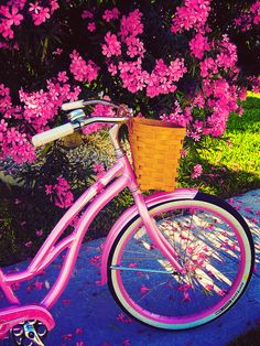 Image result for bike with pink flowers