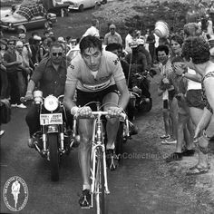 """Eddy MERCKX 1969 Tour de France Original Vintage Photograph (5""""x7"""")  Focus / Determination / Self-Confidence: Eddy Merckx  I cannot imagine the bowel emptying fear a rider who happened to be ahead of Eddy would experience if they looked over their shoulder and saw that gaze staring them down!  facebook.com/TheHortonCollection"""
