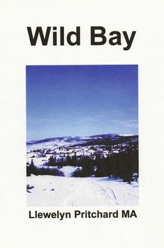 http://www.amazon.com/Wild-Bay-Mysteries-Labrador-Newfoundland/dp/1468004646/ref=la_B0061KYLG2_1_33?ie=UTF8&qid=1342008109&sr=1-33 Wild Bay is a novel of historical fiction based on unique first-hand experience in Port Hope Simpson, Newfoundland & Labrador, Canada. Llewelyn Pritchard M.A. ISBN-13: 978-1468004649 ISBN-10: 1468004646