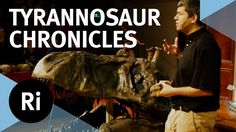 How did the Tyrannosaurus Rex and it's kind come to dominate their prehistoric world? Palaeontologist Dr David Hone explores the evolution, ecology and behav. Prehistoric World, Science Videos, Tyrannosaurus Rex, Writing A Book, Ecology, Evolution, Behavior, David, Youtube