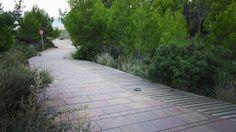Cala Calafato Foot-Paths by Manuel Ruisanchez