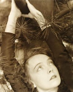 """Lillian Gish, 1934. Photographer: Edward Steichen """"I was never young. And if you were never young, how can you ever feel old?"""""""