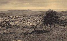 Bethlehem-بيت لحم: PALESTINE - Bethlehem, 1890s (early 20th c.) 29 The Shepard's Field near Bethlehem