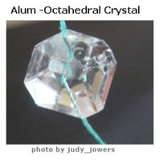 Google Image Result for http://scienceprojectideasforkids.com/wp-content/uploads/2010/01/crystal-alum1.jpg