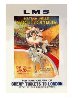 Original Vintage Poster Circus Busch Horse Performance ...