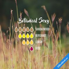 Botanical Sexy - Essential Oil Diffuser Blend