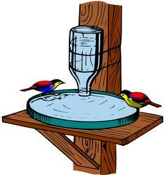 Water for Birds / Bebedouro para passaros