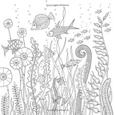 Lost Ocean: An Inky Adventure and Coloring Book for Adults (9780143108993): Johanna Basford