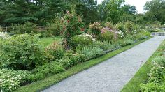 The Herbaceous Border in the Walled Garden Old Westbury Gardens, Herbaceous Border, Walled Garden, Succulents, Sidewalk, Planters, Rustic, Garden Modern, Picture Frame