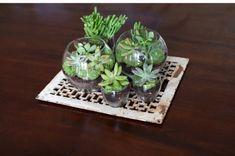 12 #Terrific #DIY Terrarium #Ideas ...