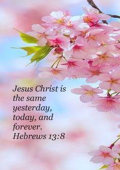 Hebrews 13 : 8. www.adealwithGodbook.com......my favorite.....he's ALWAYS THE SAME!