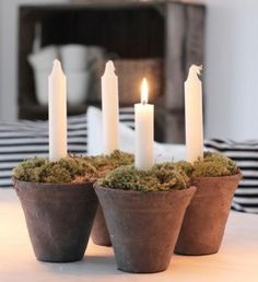 Candles in simple clay pots filled with moss via Kjerstis Lykke.