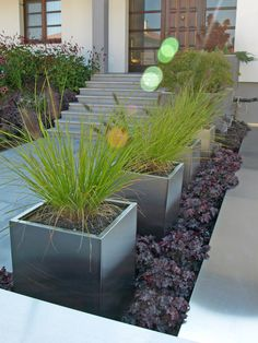 Die Topfallee   Gartengestaltung, Gartenplanung, Gartenpflege Burgenland: kugler & trinkl