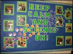 48 ideas for science decorations classroom Science Bulletin Boards, Reading Bulletin Boards, Science Boards, Classroom Bulletin Boards, Classroom Ideas, Classroom Organization, Organizing, Science Lessons, Science Education