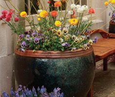 New Container Gardening publication!