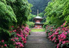 Katsuo-ji Temple: Northern Osaka