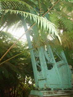 Detalles de las vigas dek jardín botánico de bruselas