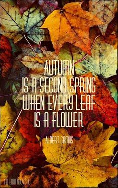 """Shower Theme & part of a game.....: """"Autumn is a second spring when every leaf is a flower."""" Albert Camus"""