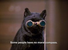cartoon memes Sabrina the Teenage Witch Cartoon Memes, Cat Memes, Funny Memes, Salem Cat, Salem Saberhagen, Archie Comics, Film Quotes, Mood Pics, Reaction Pictures