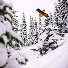www.riseandshinegear.com Snowboarding Snowboarding Photography, Reds Bbq, The Good German, Small Fireplace, Bbq Apron, Grilling Gifts, Summer Barbecue, Ride Or Die, Boarders