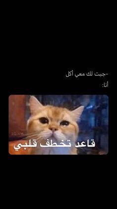 قناتي على تيليجرام 👈 iq_vx Funny Photo Memes, Memes Funny Faces, Funny Video Memes, Love Memes, Funny Photos, Arabic Memes, Funny Arabic Quotes, Black Joker, Love Quotes Wallpaper