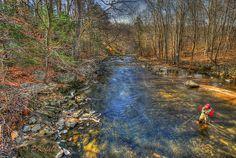 Beautiful trout stream...