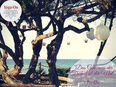 Nur Mut, an einem unserer schönen Yoga-Urlaube im Gecko Beach Club auf Formentera teilzunehmen: http://www.yoga-on.com/retreats/yoga-on-formentera/gecko-beach-club  #YogaOn #Mut #Freiheit #Meditation #Asanas #Yoga #Formentera