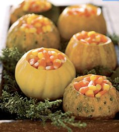 put out leftover halloween candy at thanksgiving in these gourds for a centerpiece Halloween Candy, Fall Halloween, Halloween Foods, Halloween Parties, Halloween Stuff, Autumn Decorating, Decorating Ideas, Decor Ideas, Pumpkin Decorating