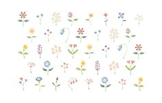 """Colorful Fowers"" −RiLi, picture book, illustration, design ___ ""色とりどりの花"" −リリ, 絵本, イラスト, デザイン ...... #illustration #flower #colorful #イラスト #花 #色"