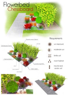 Flowerbed: chessboard. Make your own project of flowerbed with MyGreenSpace http://mygreenspace.pl/en